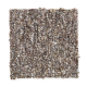 Andantino in Dark Chocolate - Carpet by Mohawk Flooring
