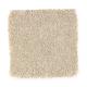 Beach Club IV in Hearth Beige - Carpet by Mohawk Flooring