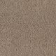 Wish Come True in Renewable Style - Carpet by Mohawk Flooring