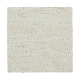 Enchanting Regard in Parchment - Carpet by Mohawk Flooring