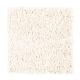 Sassy Arrangement in Grecian Column - Carpet by Mohawk Flooring