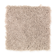 Social Circle in Putty - Carpet by Mohawk Flooring