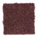 Benson Park in Baked Apple - Carpet by Mohawk Flooring