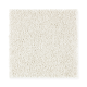 Exquisite Attraction in Fine Silk - Carpet by Mohawk Flooring