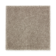 Exquisite Attraction in Plantation - Carpet by Mohawk Flooring