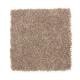 Elegant Appeal I in Season's Change - Carpet by Mohawk Flooring