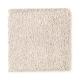 Eternal Allure I in Desert Accents - Carpet by Mohawk Flooring