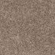 Easy Living I in Indian Sunset - Carpet by Engineered Floors
