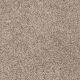 Easy Living III in Wildwood - Carpet by Engineered Floors