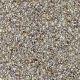 Triumphant in Rawhide - Carpet by Engineered Floors
